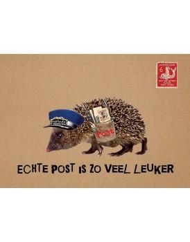 Postkaart Caatje 15
