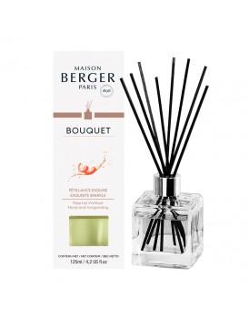 Parfum Berger Bouquet Cube Petillance Exquise
