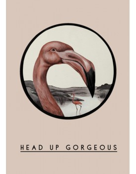 Postkaart dieren 47