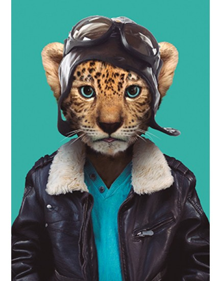 Zoo portraits 17