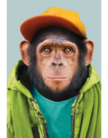 Zoo portraits 28