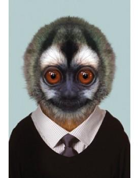 Zoo portraits 34