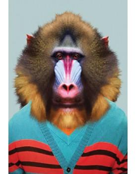 Zoo portraits 36