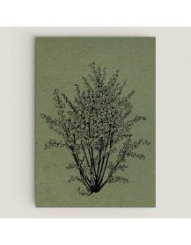 Wenskaart hazelnoot olijfblad