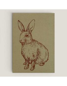 Wenskaart konijn salie