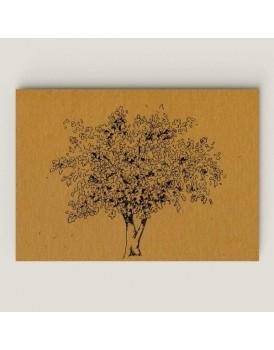 Wenskaart vijgenboom goudsbloem