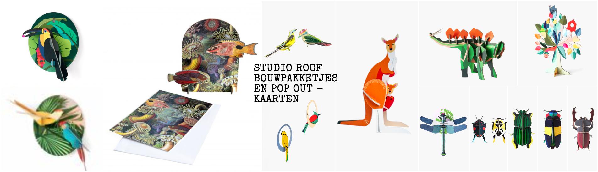 banner-studio-roof
