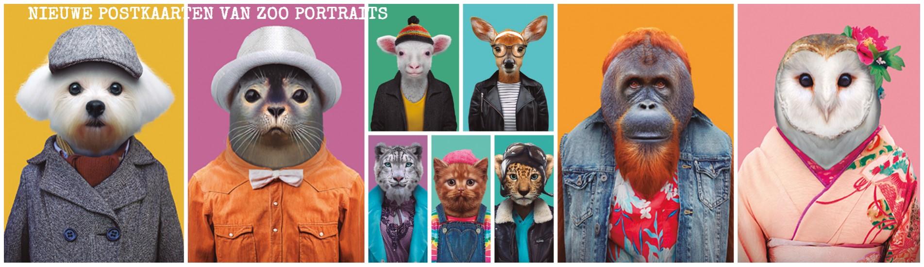 banner-postkaarten-ansichtkaarten-zoo-portraits