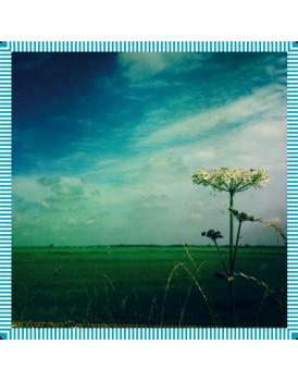 Het grote avontuur Holland horizon