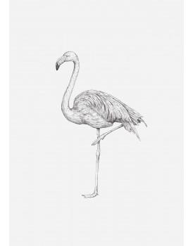 postkaart Inkylines flamingo