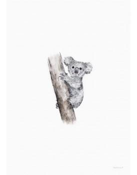 postkaart Inkylines koala