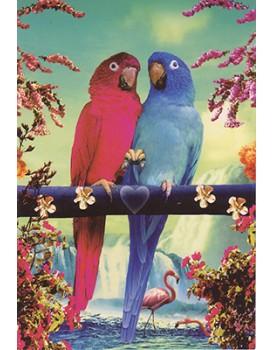 postkaart dieren 2