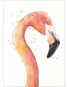 Postkaart flamingo