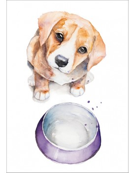Postkaart hondje