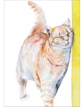 Postkaart katten 3