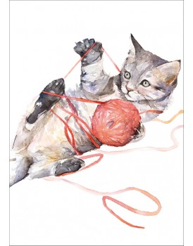 Postkaart katten 4