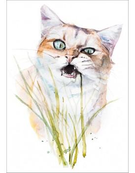 Postkaart katten 5