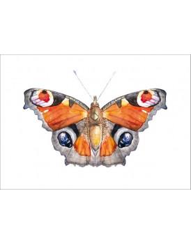 Postkaart pauwoog vlinder
