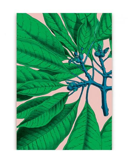 Postkaart flora 10