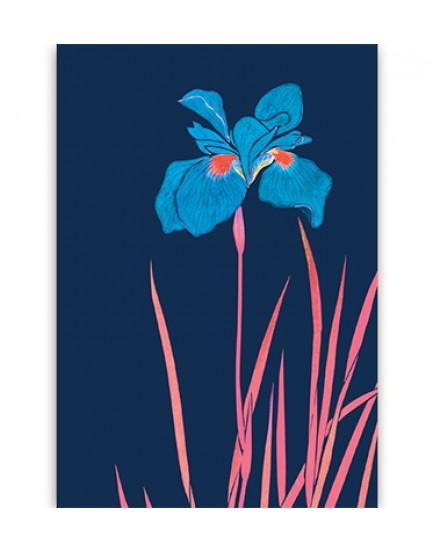 Postkaart flora  13