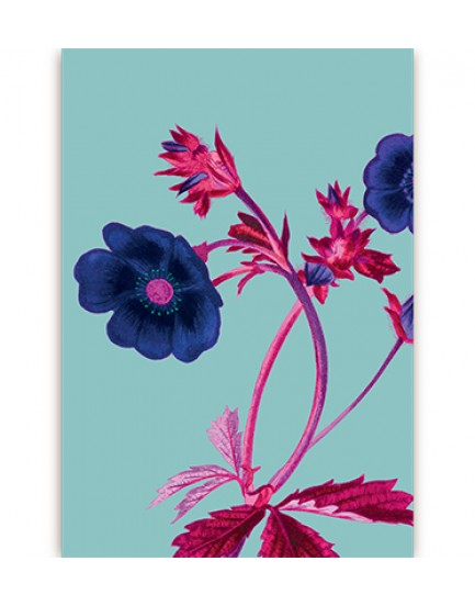 Postkaart flora 14