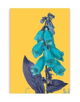 Postkaart flora 17