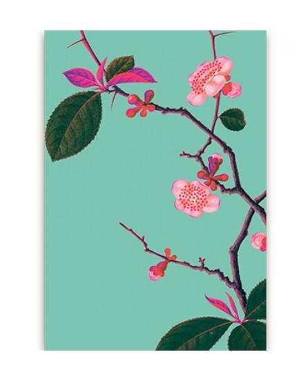 Postkaart flora 19