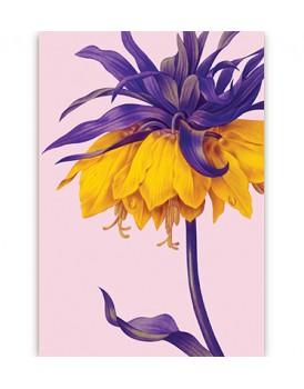 Postkaart flora 2
