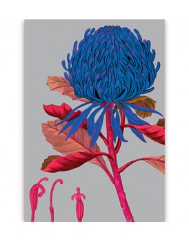 Postkaart flora 4