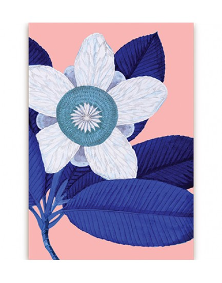 Postkaart flora 6