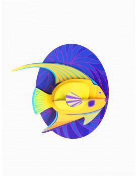 Studio Roof Yellow Angelfish