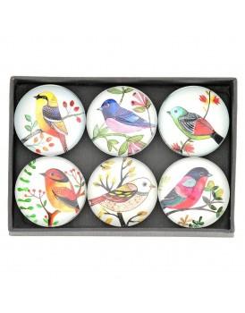 Tranquillo set 6 stuks magneten vogels